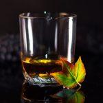 Comment choisir son verre à rhum ?